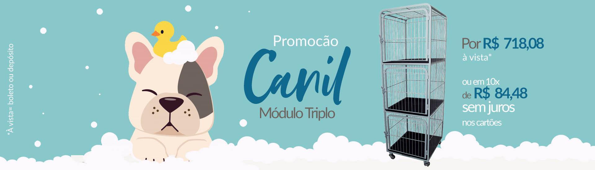 Canil Promoção